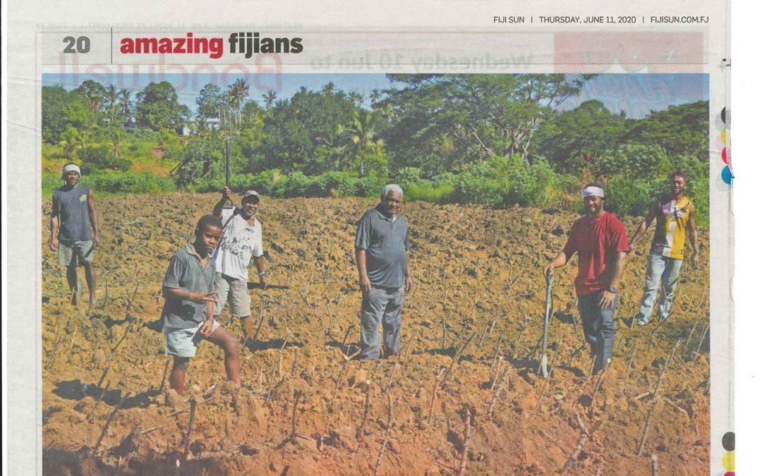 Amazing Fijians